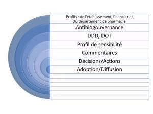 Étapes d'un rapport de surveillance de l'usage des antimicrobiens